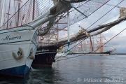 <h5>Grands voiliers dans le port de Brest</h5>
