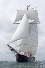 <h5>Wylde Swan</h5>