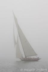 <h5>Pen Duick dans la brume</h5>