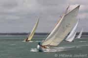 <h5>Oriole et Timia</h5>