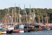 <h5>Le port de Douarnenez en fête</h5>