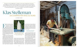 article-stelleman copy